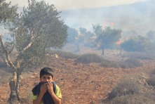 A boy avoids inhaling smoke after Israeli settlers set fire to a field of olive trees in Jalud on October 9. Photo EAPPI/O. Devine.