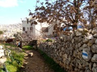 D.Peschel - Israeli 'tourist path' on Tel Rumeida hill - Hebron - 281214