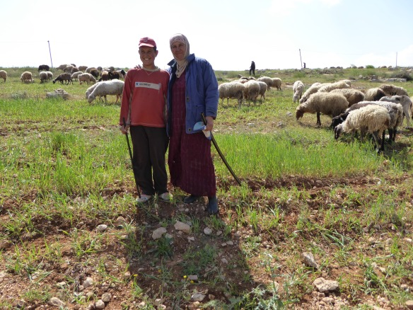 Susema and Odei sheparding on Susiya fields, South Hebron Hills, Photo EAPPI/P. Moore 2015
