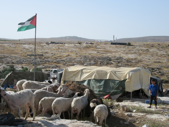21.06.15, South Hebron Hills, Daily life in Susiya,  Photo EAPPI / L.Yarkie