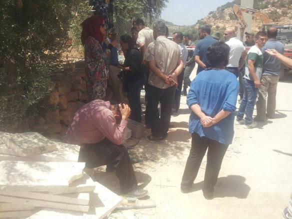 17.08.15. Beit Jala Wadi Ahmad Landowner distraught the uprooted olive trees. Photo EAPPI / T. Finstad