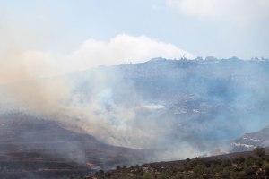 14.10.15, Burin, Arson attack by settlers set olive groves on fire . Photo EAPPI/ E. Svanberg