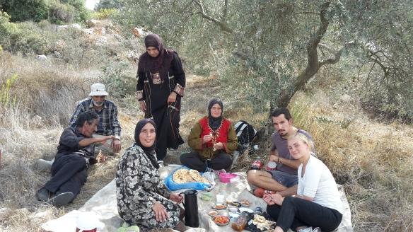 24.10.15, Bethlehem, Husan, Protective Presence wihle olive picking, Barbara