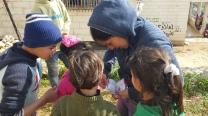 30.1.2016 Hebron, Wadi al Hussein, EA and children reading the dictionary. EAPPI/F. Barreto