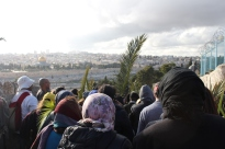 4. Descending The Mount of Olives – the Old City of Jerusalem, including golden roof of The Dome of the Rock Mosque, and the Jewish Cemetery, can be seen in the background. Photo EAPPI/ A. Juhola.