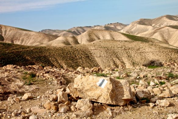 Jordan Valley MG_6565 copy