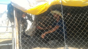 19.06.16 Israeli soldiers use force against residents protesting demolitions. Photo. N. Nawaja